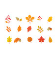 autumn leaves set fall leaf nature icons over vector image