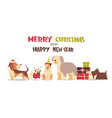 cute dogs in santa hats isolated on white vector image