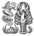 drawing vintage animal set fish crab lobster vector image