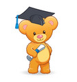 graduating cute cuddly teddy bear vector image