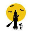 halloween witch and cat vector image vector image