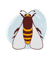 hand drawn doodle bee vector image vector image