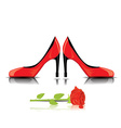 high-heel shoes isolated on white vector image