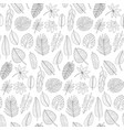 leaves tropical plants black and white outline vector image vector image