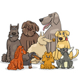 purebred dog characters group vector image vector image