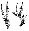set drawing plants silhouettes vector image