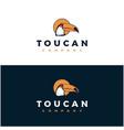 vintage bird toucan logo designtoucan bird head vector image