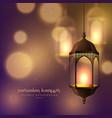 beautiful hanging lamps on blurred bokeh vector image