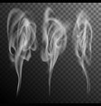 set of realistic cigarette smoke waves eps 10 vector image