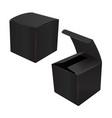 black square cardboard plastic package box vector image
