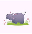 cartoon hippopotamus on green grass vector image
