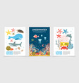 flat colorful underwater life brochures vector image vector image