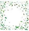 green flying or falling off leaves vector image vector image