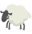 happy sheep animal character vector image vector image
