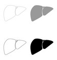 liver the black and grey color set icon vector image vector image