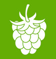 raspberry or blackberry icon green vector image vector image