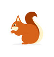 squirrel character cute vector image vector image