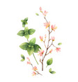 watercolor hand painting with vector image vector image