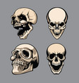 a set four skulls in different positions vector image