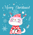 bright christmas card with a cat and snowflakes vector image