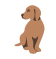 dog puppy flat style vector image vector image
