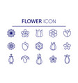 flower lineart set vector image vector image