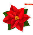 poinsettia christmas star 3d realistic icon vector image