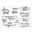 Hand written organic farm messages set vector image