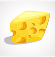a piece of cheese vector image