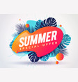 abstract summer sale banner with tropical leaves vector image