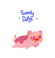 adorable piggy with fancy sunglasses vector image