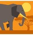 African ethnic background with of elephant vector image vector image