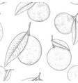 citrus mix - lemon lime fruit orange mandarin vector image vector image