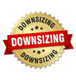 downsizing round isolated gold badge vector image vector image