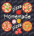 Homemade hot pizza icons set Posters design vector image vector image
