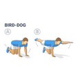 man doing bird dog exercise to train his core vector image