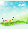 springtime meadow background with tulip flowers vector image