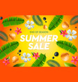 summer sale template web banner vector image vector image