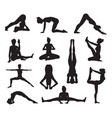 yoga or pilates poses silhouettes vector image vector image