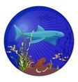 deep sea creatures big shark small fish vector image