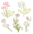 Flowers meadow vector image vector image