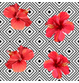 red hibiscus tropical flowers on geometric vector image