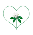 White Ixora Flowers in A Heart Shape vector image vector image
