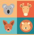 wild animals design vector image vector image