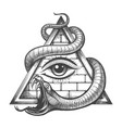 allseeing eye in magic triangle entwined snake vector image