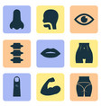 body icons set with spine lip belly and other vector image