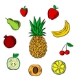 Fresh tropical and garden fruits sketches vector image vector image