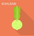 kohlrabi icon flat style vector image