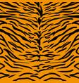 tiger skin pattern vector image vector image