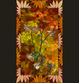 columbine orange flowers vector image